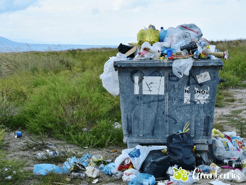 Rethink - 8 R's als Grundlagen des Zero Waste - Muell in der Natur