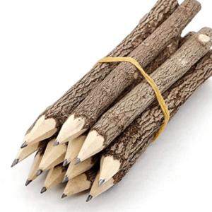 Bleistift nachhaltig
