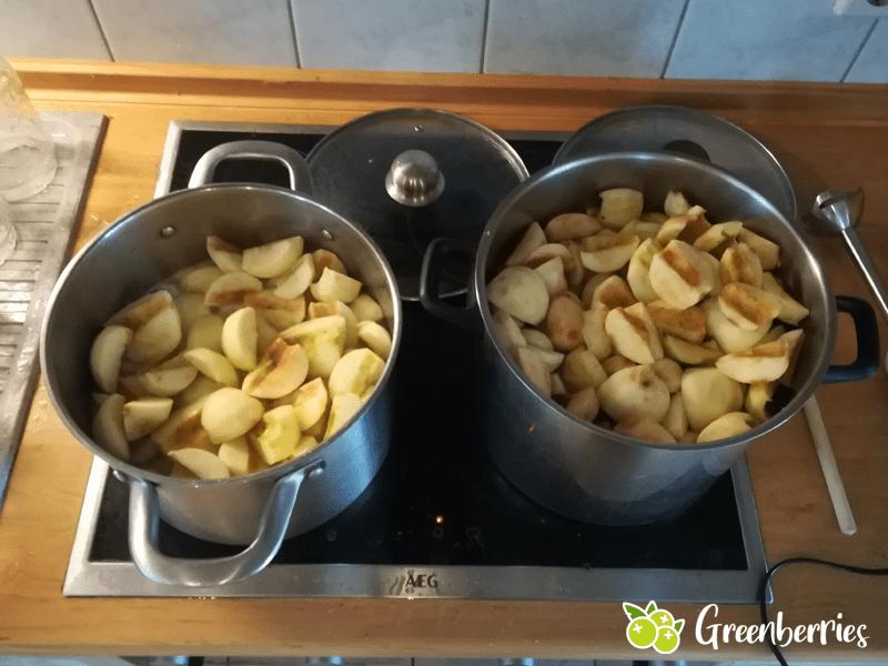 Apfelmus selber machen kochen
