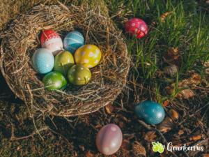 nachhaltige Ostern - Osternest