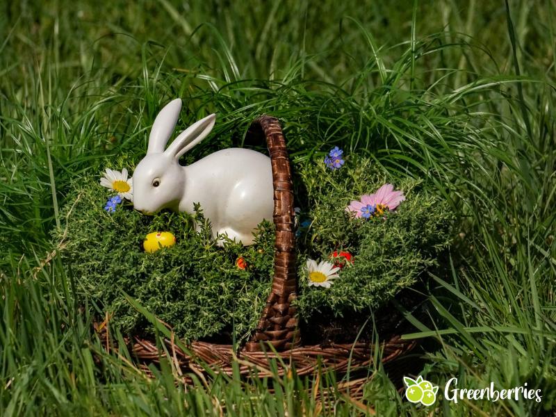 nachhaltige Ostern - Osterhasen